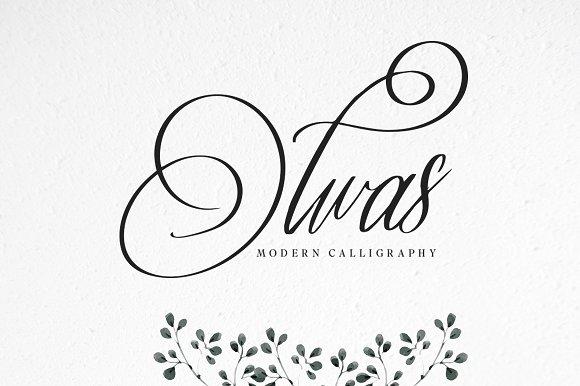 Olwas Script Font Free