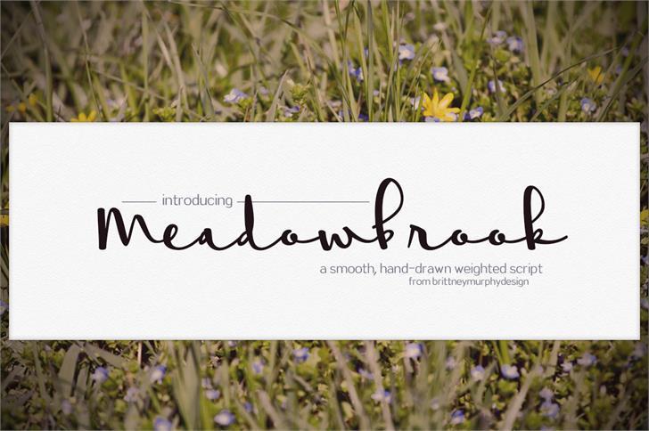 meadowbrook-font