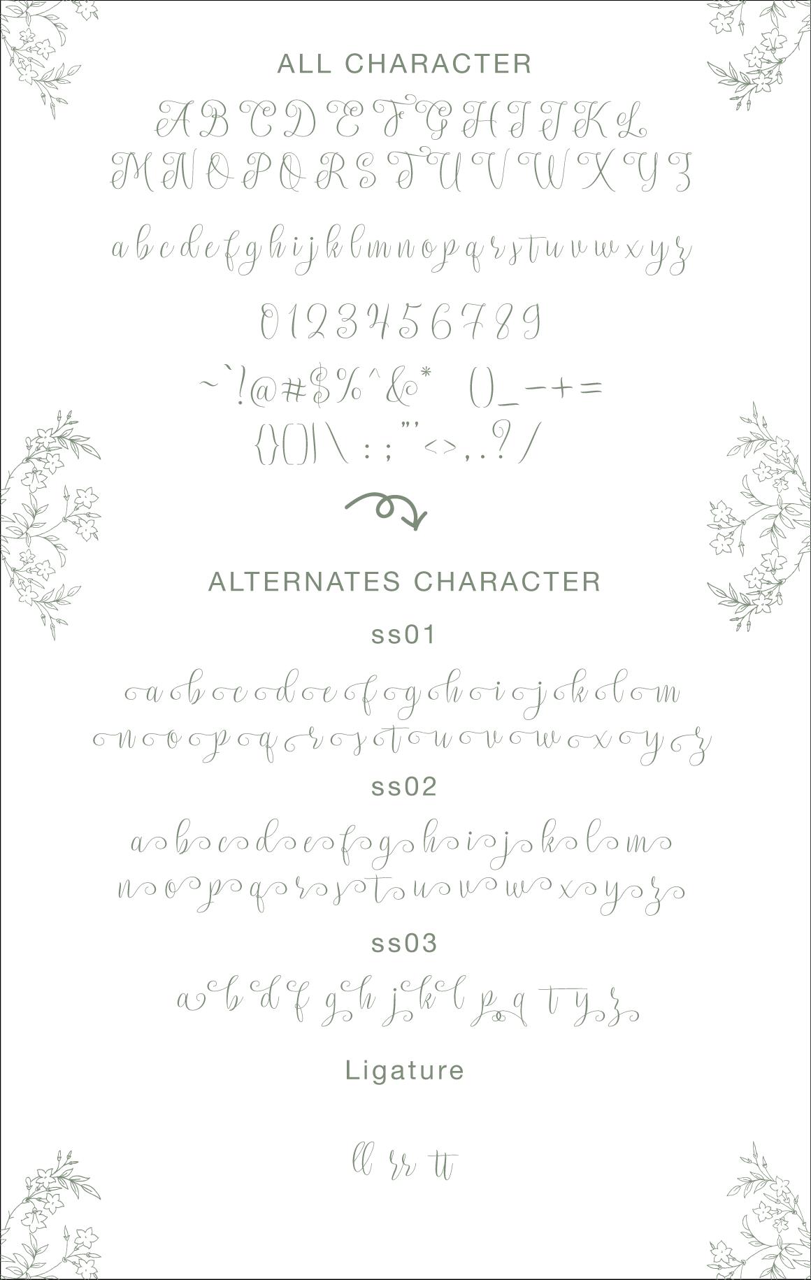 setta-script-font-4