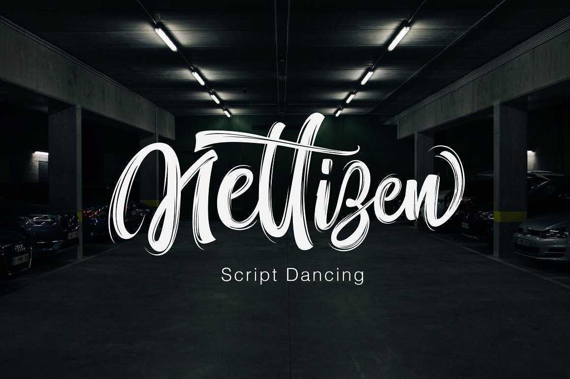nettizen-script-font