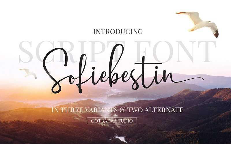 sofiebestin-script-font1