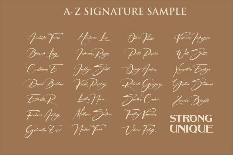 Signatrue Elegant Signature Font-2